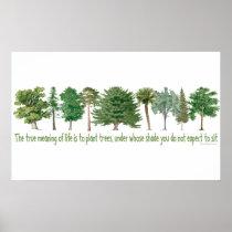 Plant Trees - Tree Lover, Hugger Poster