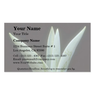 Plant Tulip Double-Sided Standard Business Cards (Pack Of 100)