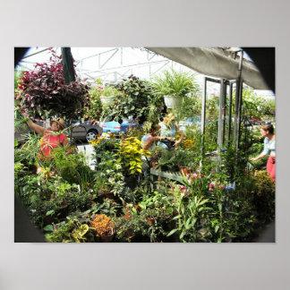 Plant Vendor Byward Market - Ottawa Ontario Canada Poster