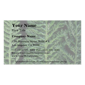 Plant Yarrow Double-Sided Standard Business Cards (Pack Of 100)