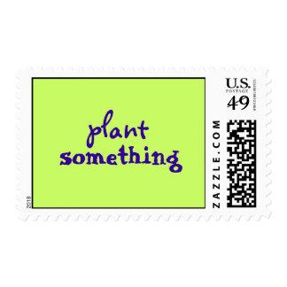 planta algo franqueo