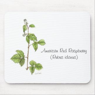 Planta americana Mousepad de la frambuesa roja Alfombrillas De Raton
