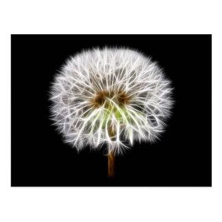 Planta blanca de la flor del diente de león postales