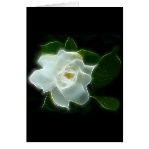 Planta blanca de la flor del Gardenia Tarjeta De Felicitación