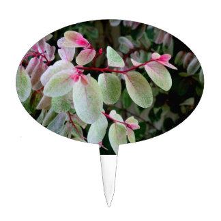 planta colorida del snowbush decoración para tarta