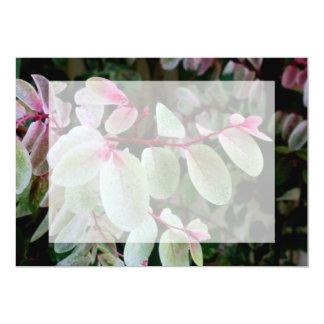 planta colorida del snowbush invitación 12,7 x 17,8 cm
