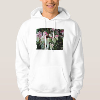planta colorida del snowbush sudaderas