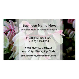 planta colorida del snowbush tarjeta de visita