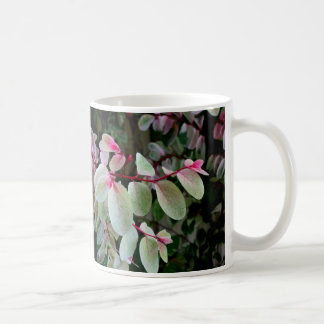 planta colorida del snowbush tazas de café