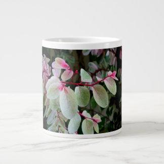 planta colorida del snowbush tazas jumbo