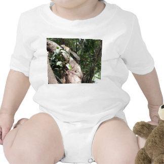 planta de aire en árbol con la ocultación de la ar camisetas