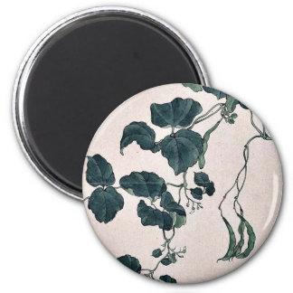 Planta de guisante que muestra la vid y los flores iman de frigorífico