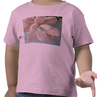 Planta de haba rosada suculenta de jalea de Sedum Camiseta