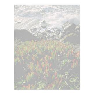 Planta de hielo en la playa de Presidio, San Franc Membretes Personalizados