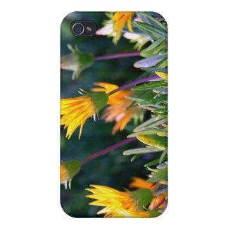 Planta de hielo iPhone 4 cárcasa