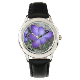 Planta de jardín floreciente del azafrán reloj