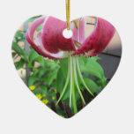 Planta de jardín marrón verde del lirio adorno