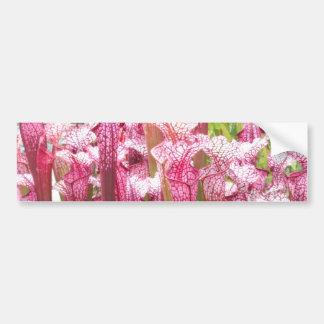 Planta de jarra rosada; Flores rosadas Pegatina Para Auto