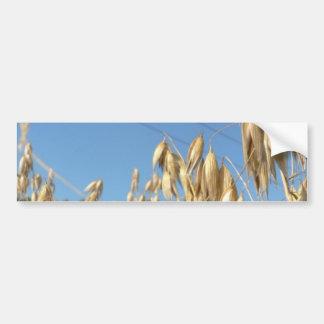 Planta de la avena pegatina de parachoque