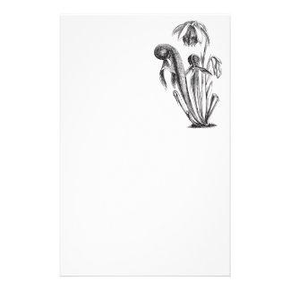Planta de la cobra del Wildflower de California Papeleria