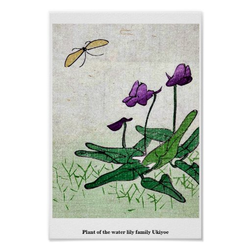Planta de la familia de lirio de agua Ukiyoe Posters