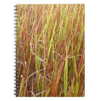 Planta de la Florida del fondo de los sawgrass de  Libreta Espiral