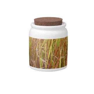 Planta de la Florida del fondo de los sawgrass de  Tarro De Cerámica Para Dulces
