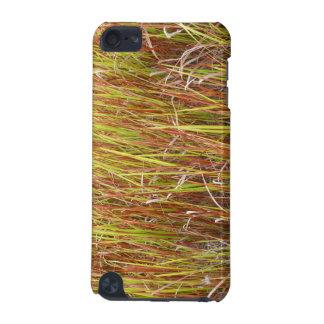 Planta de la Florida del fondo de los sawgrass de  Funda Para iPod Touch 5G