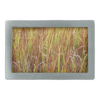 Planta de la Florida del fondo de los sawgrass de  Hebilla Cinturón Rectangular