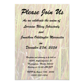 """Planta de la Florida del fondo de los sawgrass de Invitación 5"""" X 7"""""""