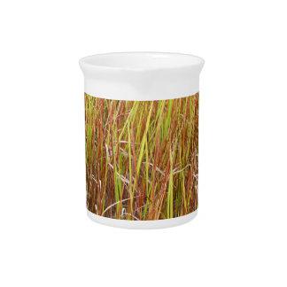 Planta de la Florida del fondo de los sawgrass de  Jarras De Beber