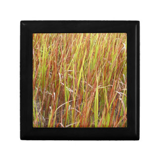 Planta de la Florida del fondo de los sawgrass de  Joyero Cuadrado Pequeño