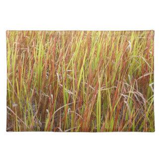 Planta de la Florida del fondo de los sawgrass de  Mantel