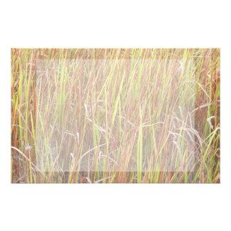 Planta de la Florida del fondo de los sawgrass de  Papelería Personalizada