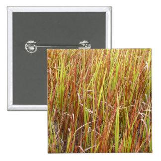 Planta de la Florida del fondo de los sawgrass de  Pin Cuadrada 5 Cm