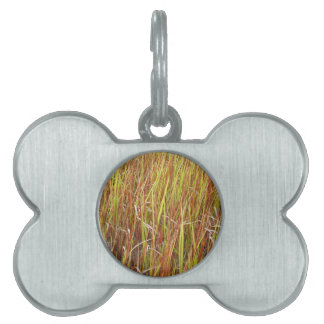 Planta de la Florida del fondo de los sawgrass de  Placas De Nombre De Mascota