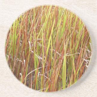 Planta de la Florida del fondo de los sawgrass de  Posavasos Manualidades