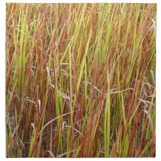 Planta de la Florida del fondo de los sawgrass de  Servilleta De Papel