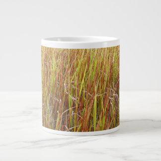 Planta de la Florida del fondo de los sawgrass de  Taza Grande