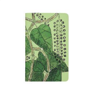 Planta de la pimienta negra, 1578 cuadernos