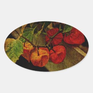 Planta de linterna china con la fruta pegatina ovalada