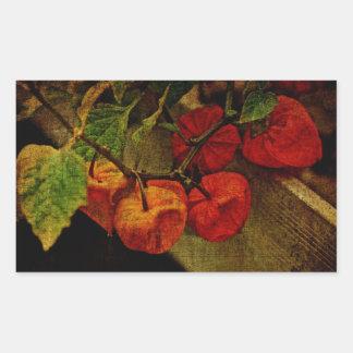 Planta de linterna china con la fruta pegatina rectangular