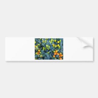 Planta de los pimientos picantes etiqueta de parachoque