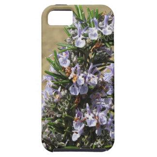 Planta de Rosemary con las flores Funda Para iPhone SE/5/5s