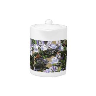 Planta de Rosemary con las flores
