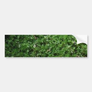 Planta de tierra verde botánica al aire libre de l pegatina para auto