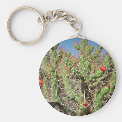 Planta del cactus, barranco de Colca, Perú, Suramé Llavero Redondo Tipo Pin