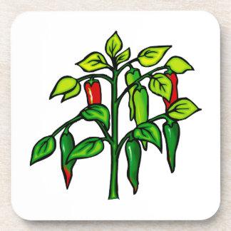 Planta del chile muchas pimientas gráficas posavasos