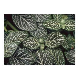 """Planta del nervio de la planta invitación 5"""" x 7"""""""