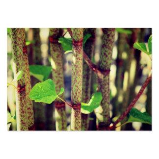 Planta exótica tarjetas de visita grandes